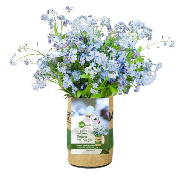 Growbag Myosotis SuperWaste Ditha Bonita