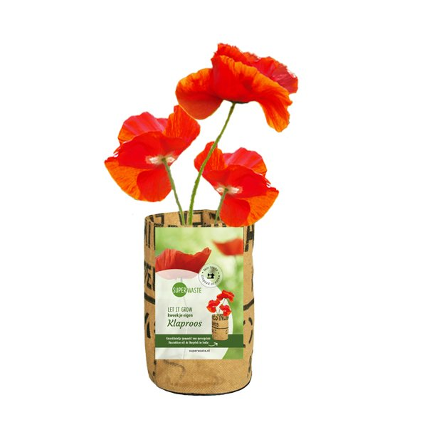 Growbag Poppies SuperWaste Ditha Bonita
