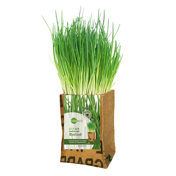 Growbag Chives SuperWaste DItha Bonita