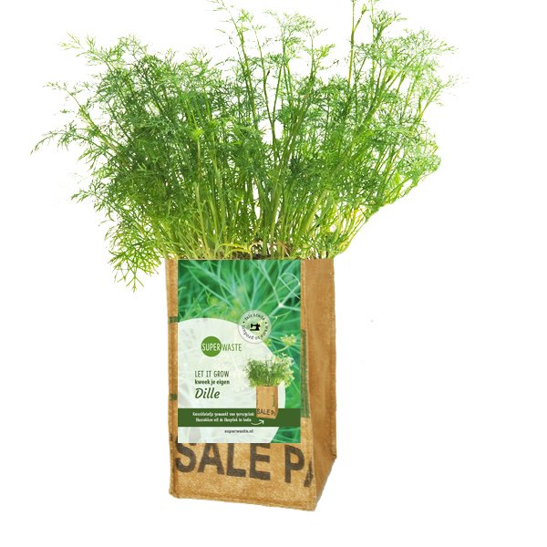 Growbag Dill SuperWaste DItha Bonita