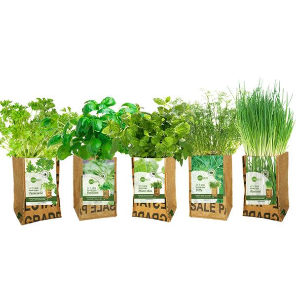 let-it-grow-superwaste-herbs-kweektuin bij Ditha Bonita