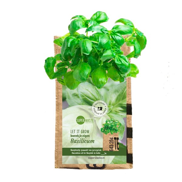 713 Hanging garden Basil SuperWaste