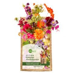 Hangtuintje met vlinderbloemen mix koop je bij Ditha Bonita