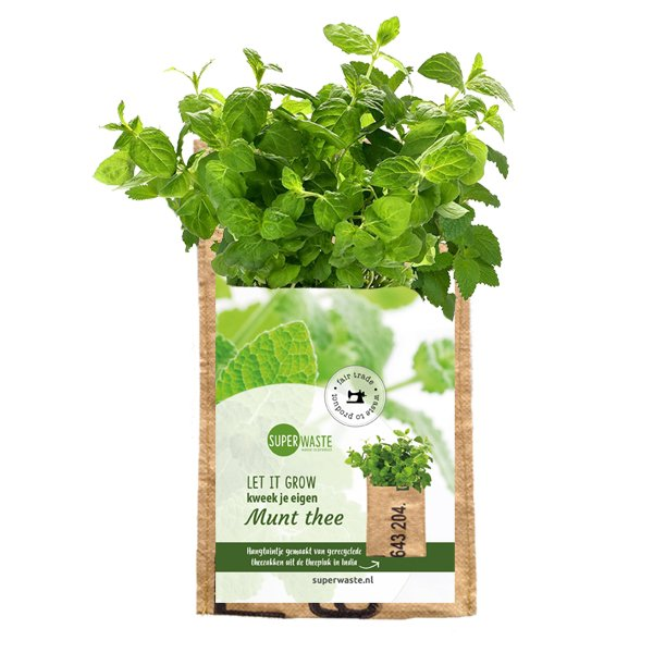 Hanging garden Mint SuperWaste is te koop bij Ditha Bonita